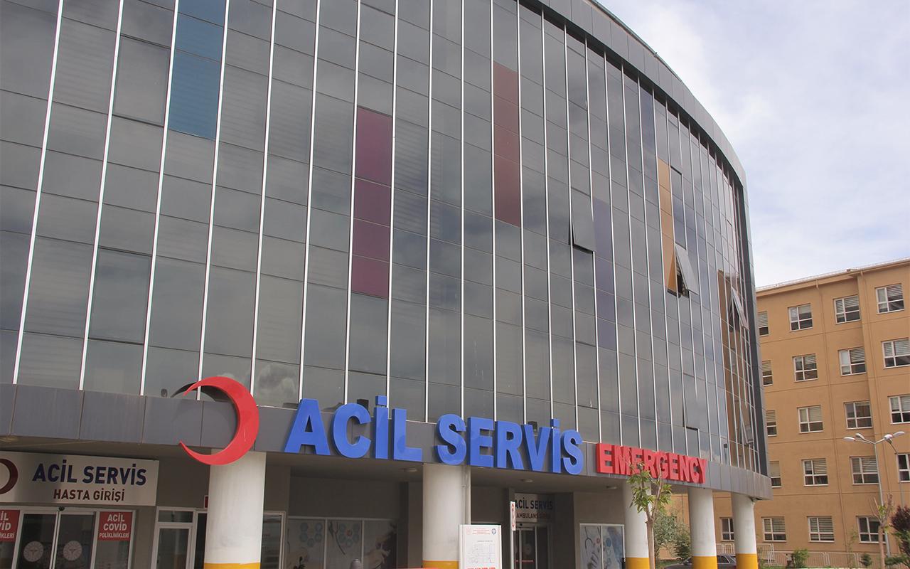 Erzincan'da 30'un üzerinde kene vakası görüldü, 1 kişi hayatını kaybetti
