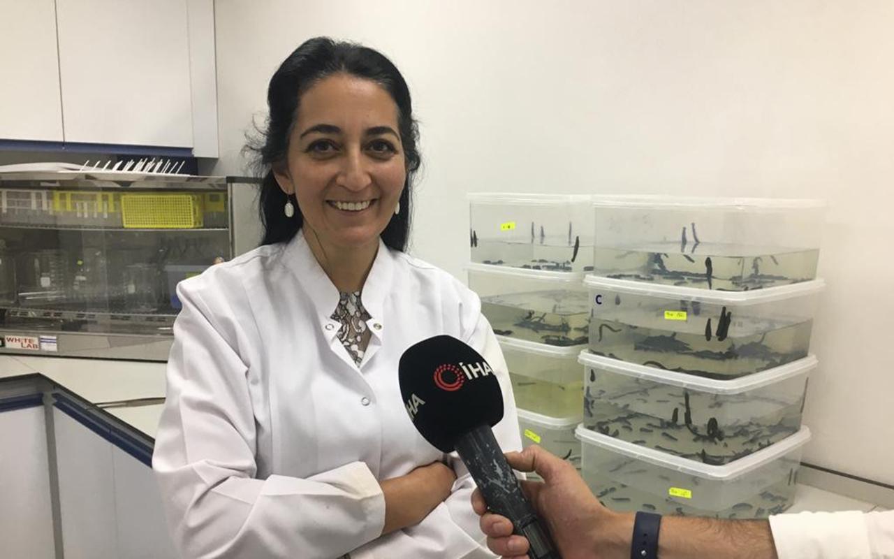 ERÜ'de yerli Covid aşısından sonra kanser ilacında da faz çalışmaları başlayacak