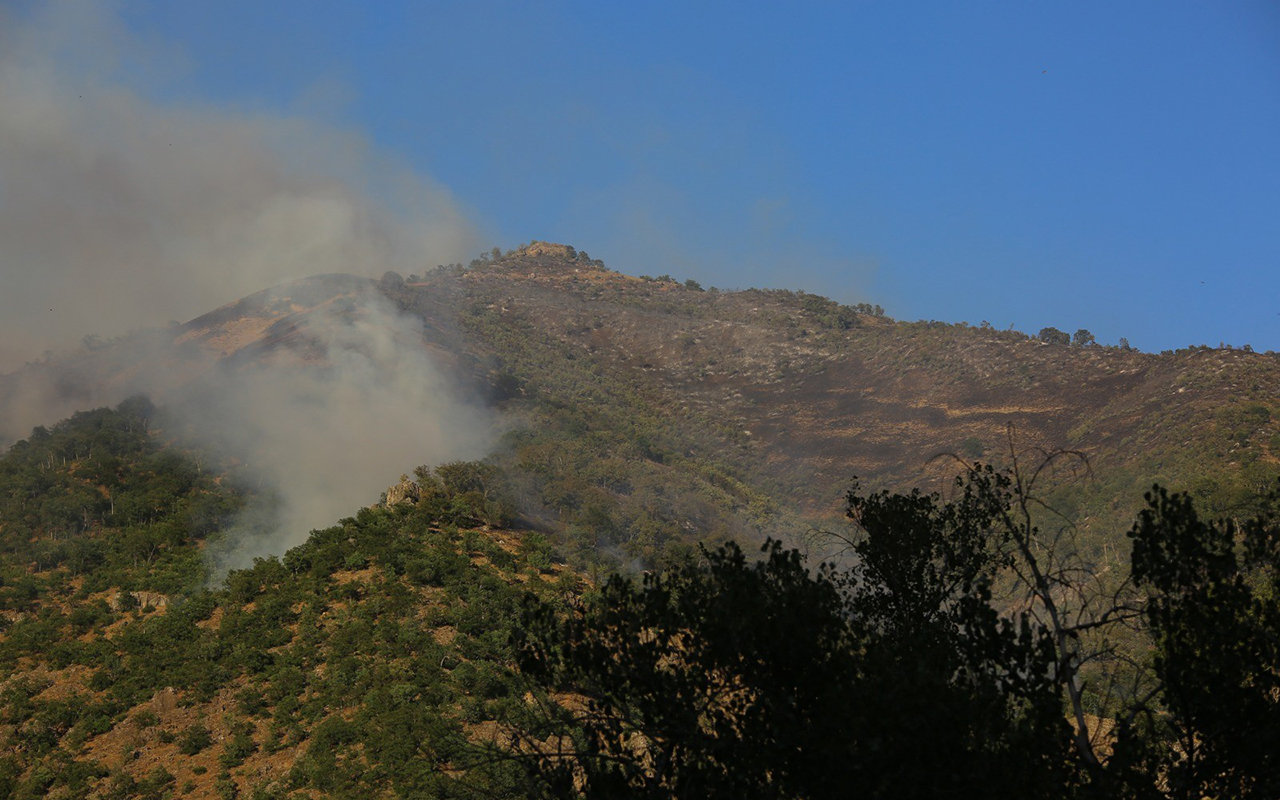 Tunceli Munzur Vadisindeki yangına havadan ve karadan müdahale sürüyor
