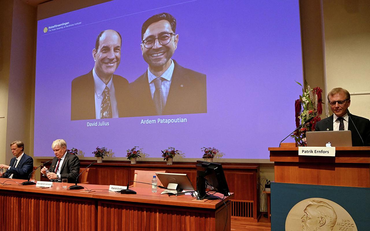 2021 Nobel Tıp Ödülü'nün kazananları belli oldu